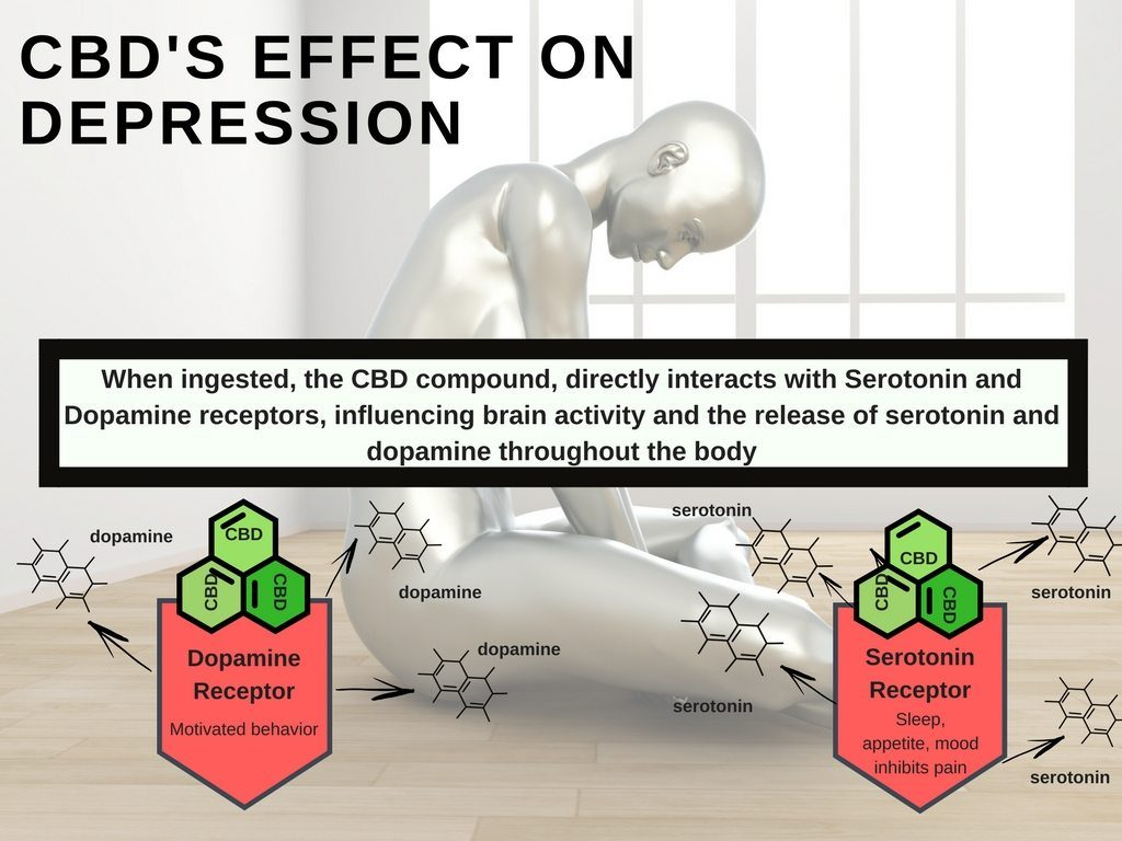 10 Best CBD Oils For Stress, Anxiety, and Back Pain